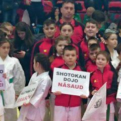 Shotokan Dojo Năsăud a obținut zece medalii la Campionatul Național!