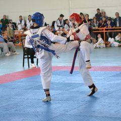 Taekwondo: Ilyo Open Cup, sâmbătă, la Sala Polivalentă!