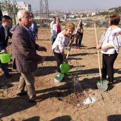 A plantat măslini în Turcia! Doina Pană celebrează centenarul într-un mod inedit!