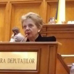 """Doina Pană: """"Cireașa de pe tort""""- Legea offshore"""""""